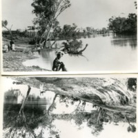 Warego River, [no date]