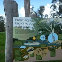 One of the signs along the Condamine River explaining the recovery process as a result of the work being done to improve the health of the creeks and rivers of the Condamine catchment, 2010