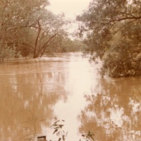 Culgoa River flooded at Brenda Station (NSW), 1983