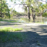 High water on the Darling River, 2010