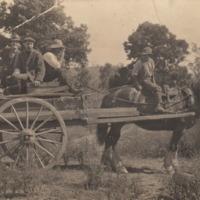 Horse-drawn wagon, Hughendon property, circa 1918