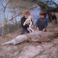 Children with large Murray Cod, Murray River, [no date]