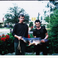 Jim Hanley (L) and Eddie Lennon (R) picture with a 25 pound Murray Cod, Murchison East (VIC), 1965.