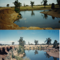 Before and after shots showing the riparian vegetation restoration progress made on the Jamaeson property, Namoi River (NSW), November 1991 (top), April 1995 (bottom)