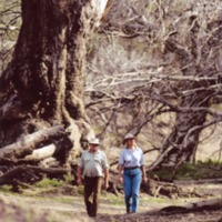 The Petersens walking on the Culgoa River flat (NSW), [no date]