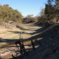 Drought, below Wilcannia (NSW), August 2007
