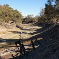 Drought, below Wilcannia (NSW), August 2007
