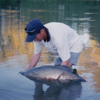Jason Simpson with Murray Cod, Namoi River (NSW), [no date]