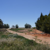 Windmill, Grace property, Great Anabranch, 2010