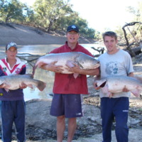 (L to R) Troy Hayman, Nathan Ryan and Jo Willoughby at Beemery (near the intersection of the Bogan and Darling rivers), 2006-04-16