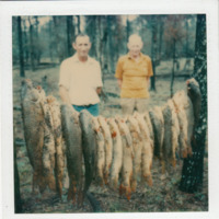 Carp on string, Mooki River, Pine Ridge (NSW), circa 1980 (Taken by N. Sadler).