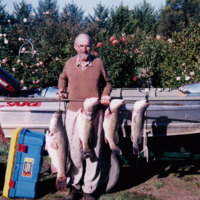 Jim with four Murray Cod: 24, 10, 8 and 6 pounds, 17 April 2003.