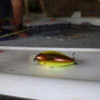 Fishing lure used by Tony Martin, 2011