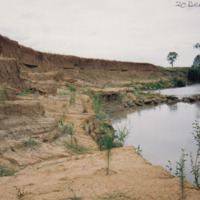 Riparian vegetation restoration on the Jamaeson property, Namoi River (NSW), 20 December 1992
