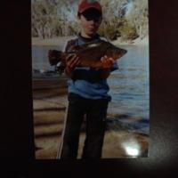 Fish catch, Corowa Anglers Club, [no date]