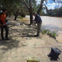 Talking Fish research team fishing on the Paroo River, oral history interview with Paul Wheeler, 2010
