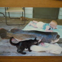 Baby pictured with a large Murray Cod and a cat, n.d.