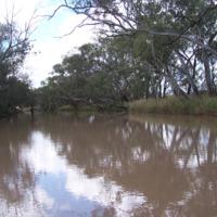 Bowenville, Queensland, 2010
