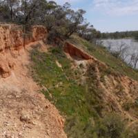 Riverbank, Katarapko Creek, 2010