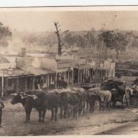 Cattle-drawn wagon, [no date]