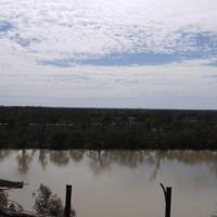 Katarapko Creek, 2010