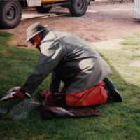 Cleaning Callop, Murray River, 1992