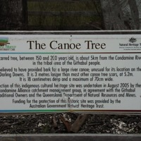 Plaque at Canoe Tree, a protected Aboriginal cultural heritage site, Condamine (QLD), 21 September 2010.