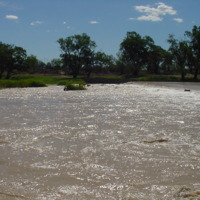 Healthy flows in the Darling River (NSW), n.d.