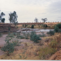 An area of riverbank that Doug Jamaeson has been<br /> steadily replanting, Namoi River (NSW), May 1995