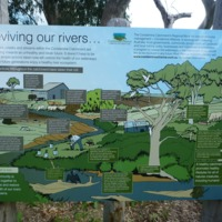 One of the signs along the Condamine River explaining the work being done to improve the health of the creeks and rivers of the Condamine catchment, 2010
