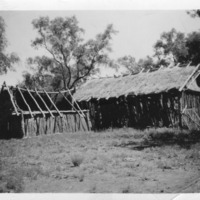 House of parents of Ron Heinemman, Springvale (west of Eulo), Queensland, circa 1920s